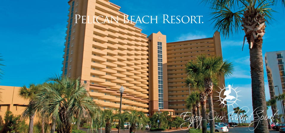 Pelican Beach Resort 1 Bedroom 2 Bath Dolphin Inium